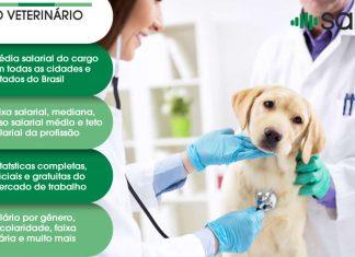 Medico Veterinário – Salário – PR