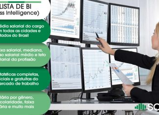 Analista de BI (Business Intelligence)